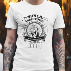 Camiseta Increible_8