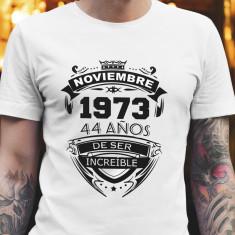 Camiseta Increible_9