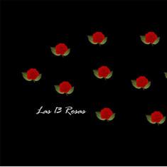 Mascarilla Las 13 Rosas con filtro